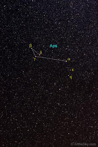 Apus - Constellations ...